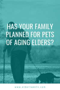Planning for Pets of Aging Elders